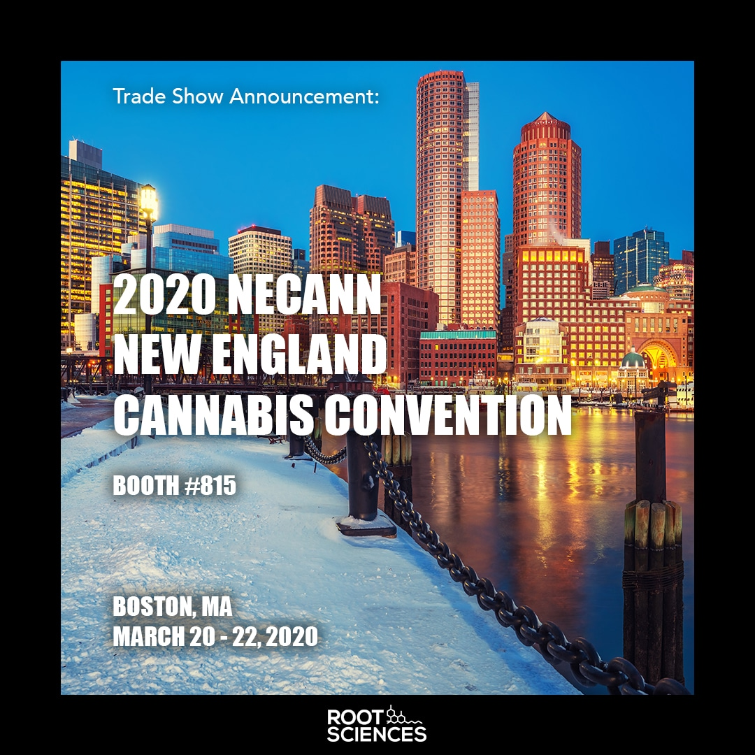 Read more about the article NECANN BOSTON – BOOTH 815
