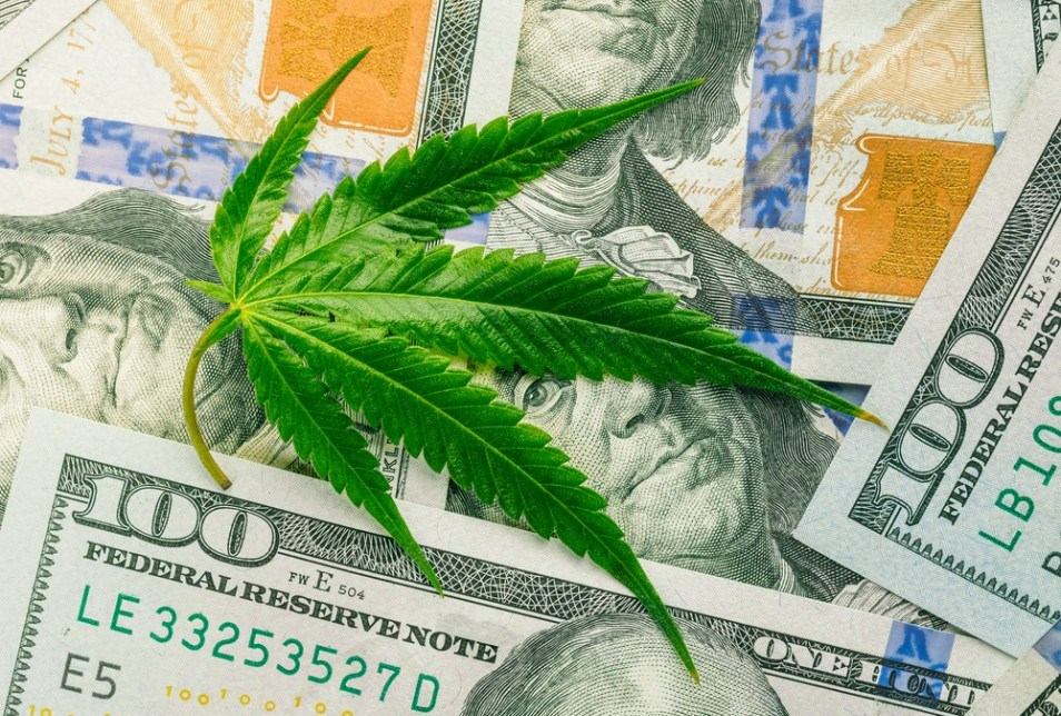 Read more about the article FOUR REASONS CANNABIS LEGALIZATION IS GOOD FOR THE ECONOMY