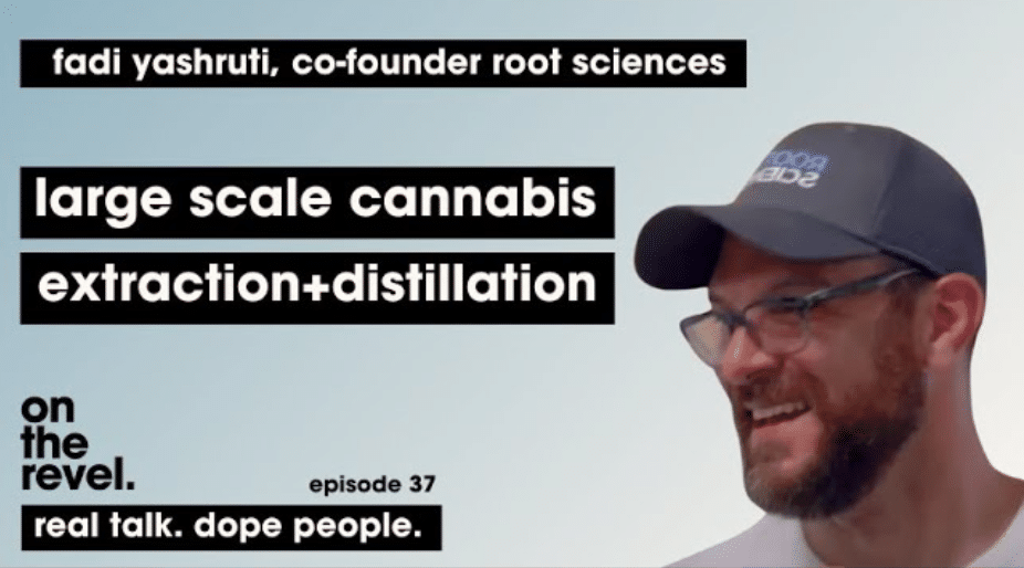 large scale cannabis extraction and distillation